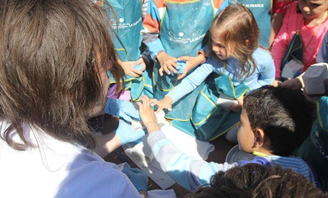 Los niños creando sus rocas