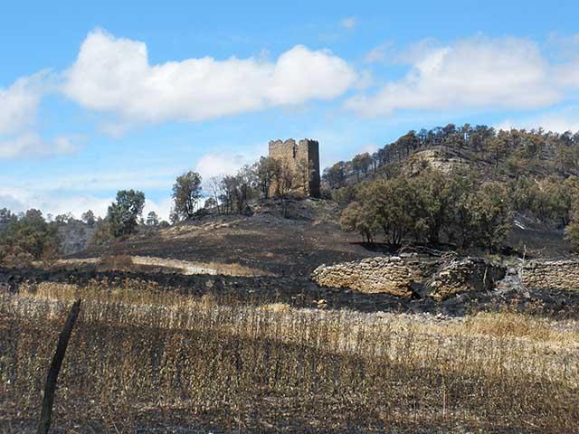 Torre vigía MInarrubio