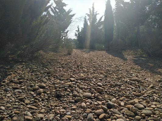 Cantos rodados del antiguo cauce del río Ebro