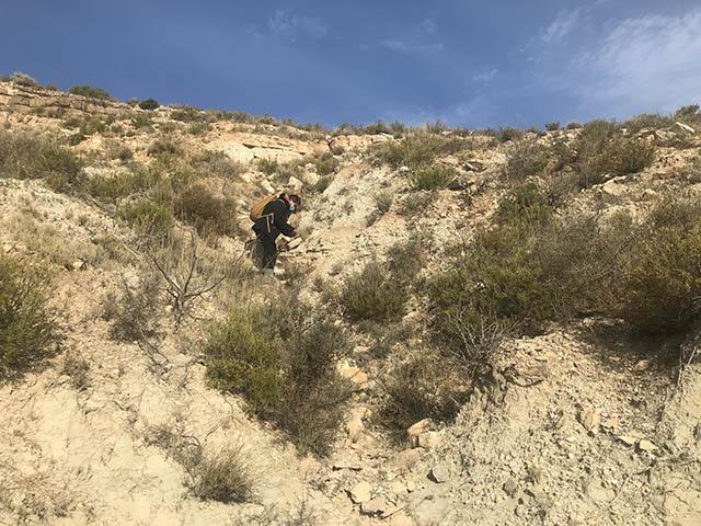 geóloga realizando trabajo en el campo