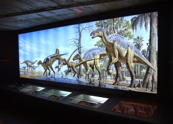 panel retroiluminado museo dinosaurios de Arén